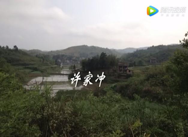 许家冲伍氏2013清明祭祖